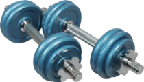 dumbbell_PNG16404